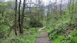 Broadhurst Clough image