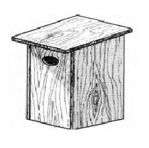 drawing of a nest box