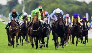 Horse Racing image