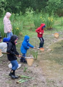 children using nets to dip for water creatures